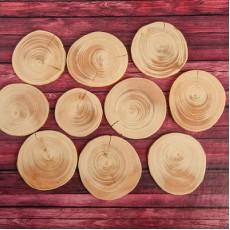 Набор спилов круглый, d=5-7 см, h= 5 мм, 5 шт #10281